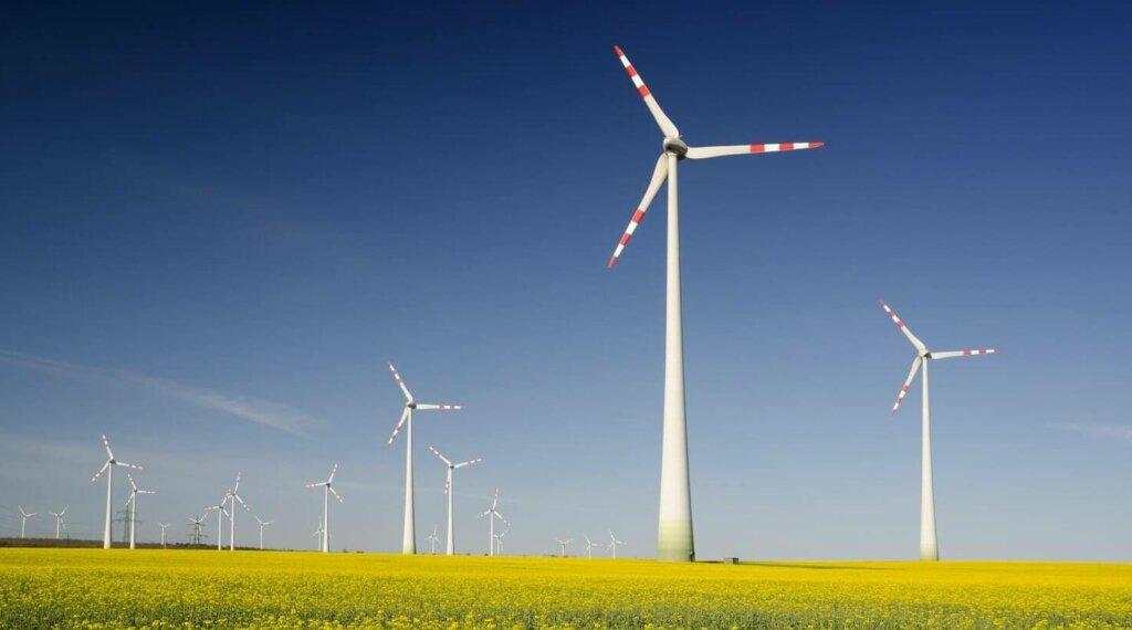 De energietransitie gaat te langzaam: 'We hebben bestuurders met lef nodig'